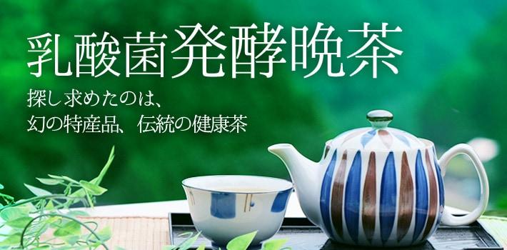 乳酸菌発酵晩茶 探し求めたのは、幻の特産品、伝統の健康茶