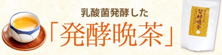 乳酸菌発酵した「発酵晩茶」