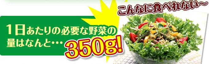 1日あたりの必要な野菜の量はなんと…350g!こんなに食べれない~