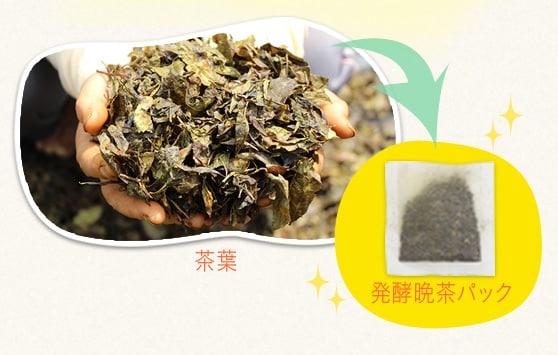 茶葉 発酵晩茶パック