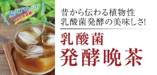 昔から伝わる植物性乳酸菌発酵の美味しさ! 乳酸菌発酵晩茶