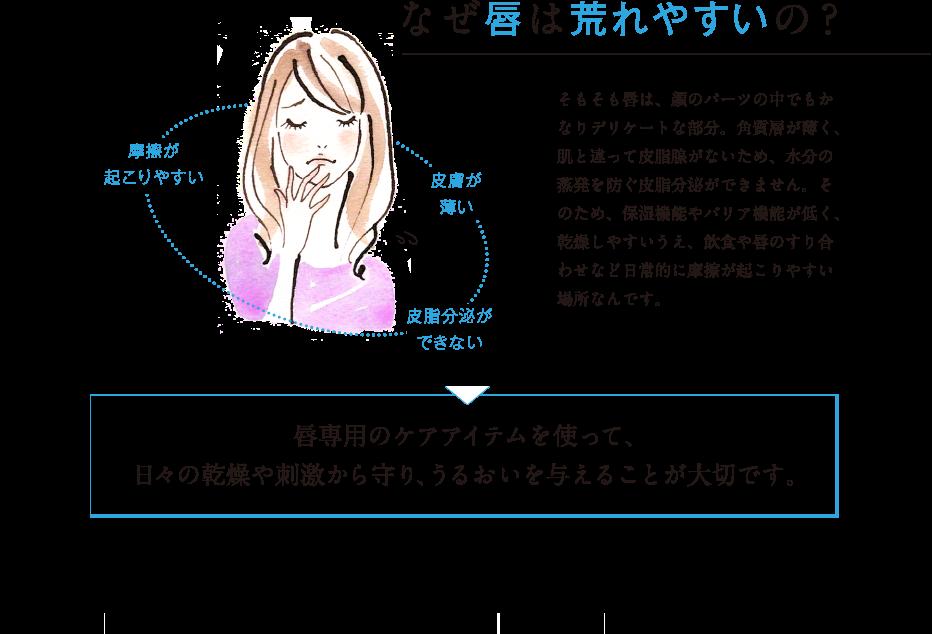 なぜ唇は荒れやすいの? そもそも唇は、顔のパーツの中でもかなりデリケートな部分。角質層が薄く、肌と違って皮脂腺がないため、水分の蒸発を防ぐ皮脂分泌ができません。そのため、保湿機能やバリア機能が低く、乾燥しやすいうえ、飲食や唇のすり合わせなど日常的に摩擦が起こりやすい場所なんです。 唇専用のケアアイテムを使って、日々の乾燥や刺激から守り、うるおいを与えることが大切です。