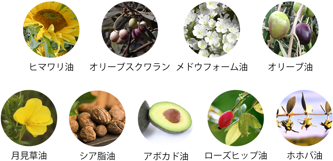 9種類の天然植物由来オイル、ヒマワリ油、オリーブスクワラン、メドウフォーム油、オリーブ油、月見草油、シア脂油、アボカド油、ローズヒップ油、ホホバ油