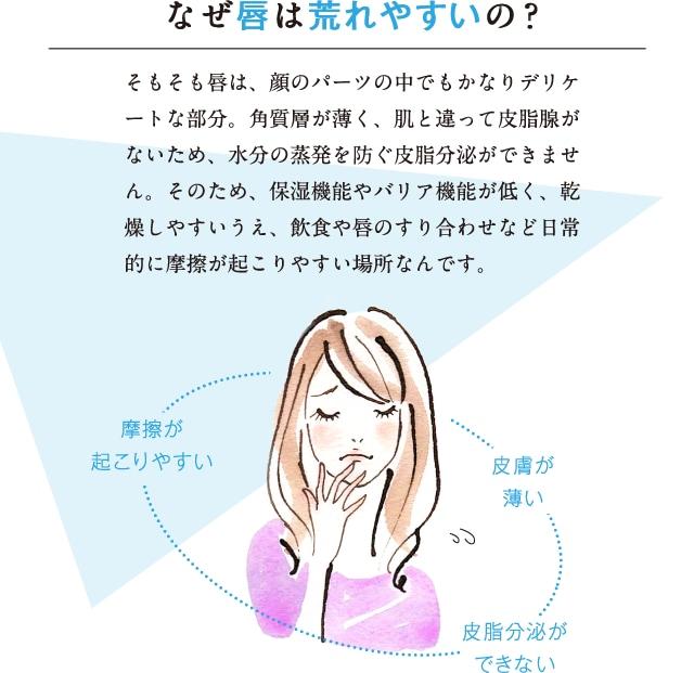なぜ唇は荒れやすいの? そもそも唇は、顔のパーツの中でもかなりデリケートな部分。角質層が薄く、肌と違って皮脂腺がないため、水分の蒸発を防ぐ皮脂分泌ができません。そのため、保湿機能やバリア機能が低く、乾燥しやすいうえ、飲食や唇のすり合わせなど日常的に摩擦が起こりやすい場所なんです