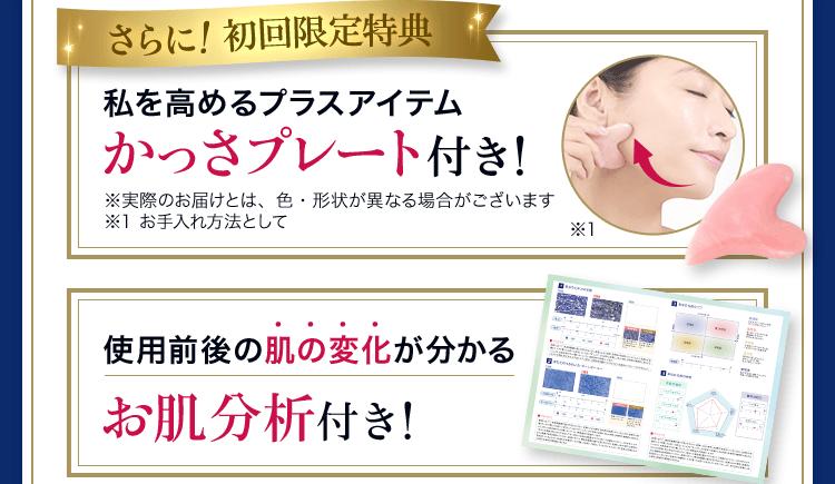 いちばんお得な定期便コース RFプレミアムセット<30日分>