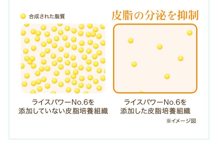 イメージ図:皮脂の分泌を抑制