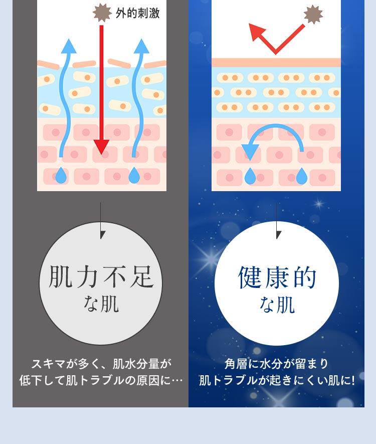 【肌力不足な肌】スキマが多く、肌水分量が低下して肌トラブルの原因に… 【健康的な肌】角層に水分が留まり肌トラブルが起きにくい肌に!